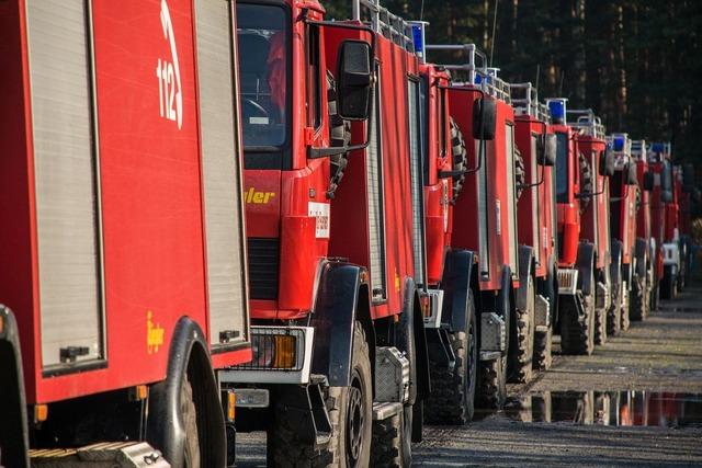 Fire forest fire brand, transportation traffic.