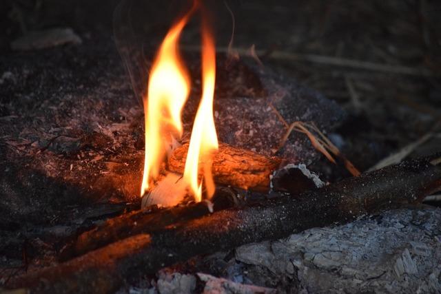 Fire viking museum vikings.