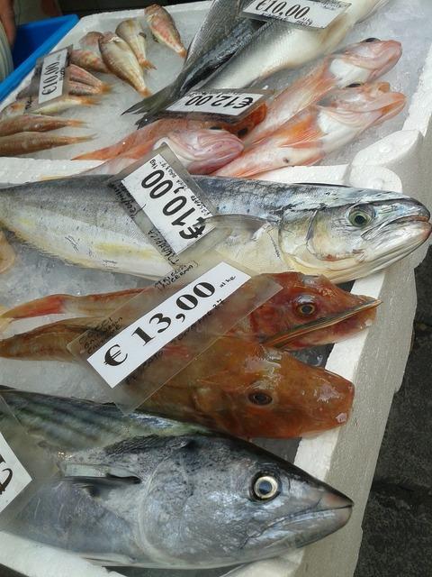Fish frisch market, food drink.