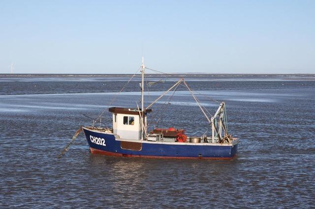 Fishing boat moored.