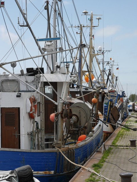 Fishing boat port maritime.