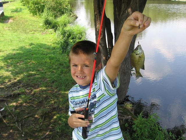Fishing fish boy, people.