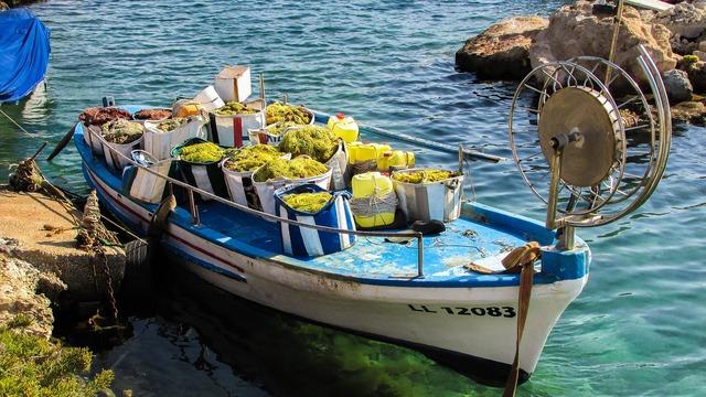 Fishing shelter fishing boat equipment.