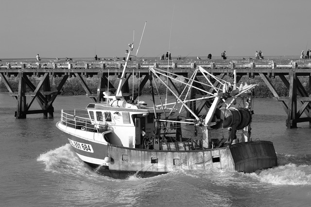 Fishing vessel port france, travel vacation.