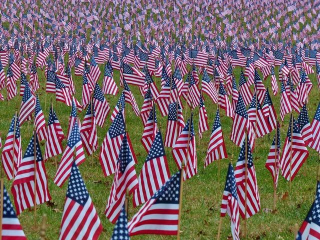 Flags american usa.