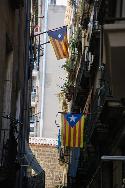 Flags catalonia homes, architecture buildings.