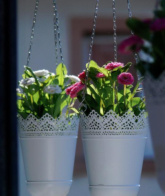 Floral flowers hanging basket, nature landscapes.