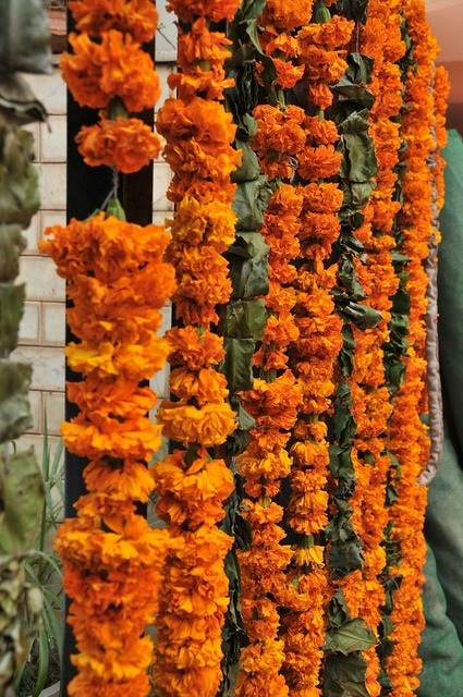 Flowers garland decoration.