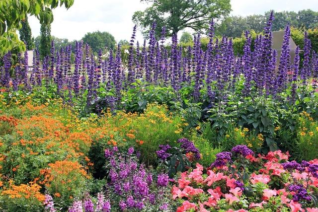 Flowers plant bed, nature landscapes.
