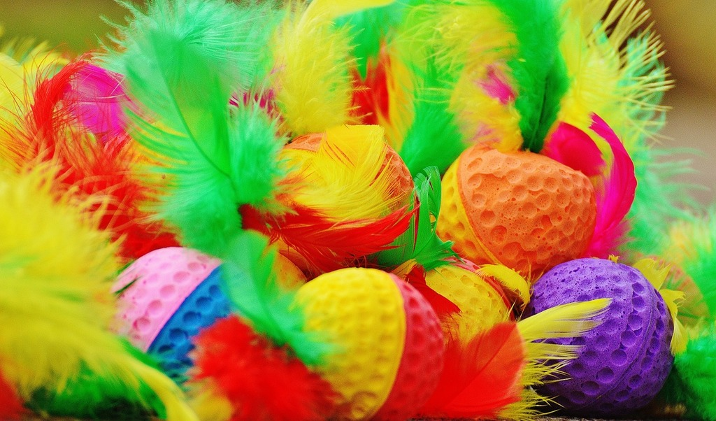 Foam balls feather colorful, animals.