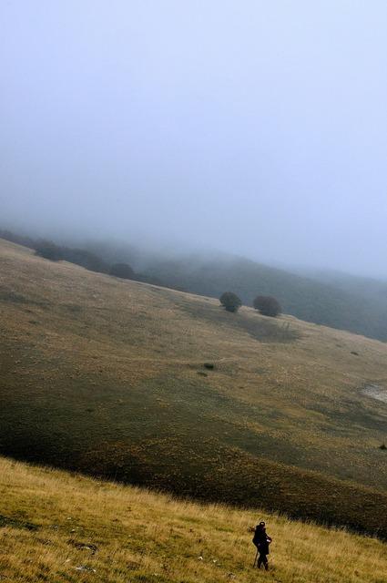 Fog campaign solitude.