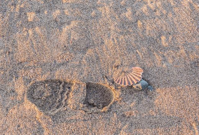 Footprints path walker, travel vacation.