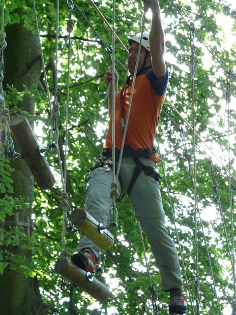 Force high ropes course effort, nature landscapes.