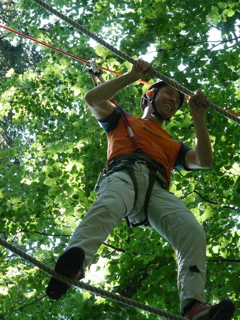 Forest ropes high ropes course detention, nature landscapes.