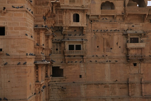 Fort india rajasthan, architecture buildings.