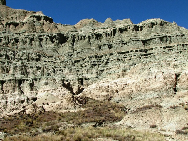 Fossil beds geological rock formation.