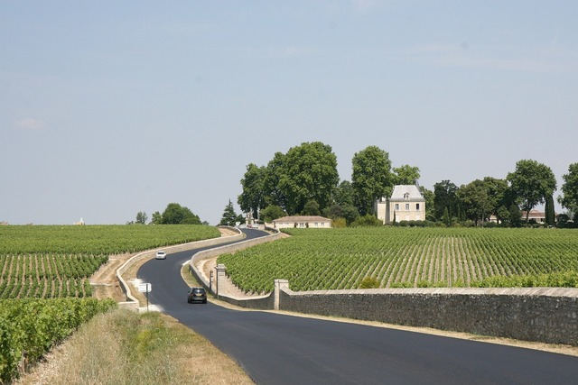 France bordeaux winery.