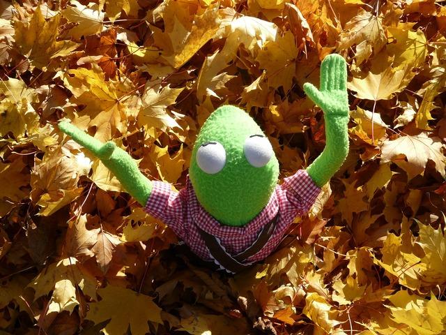 Frog kermit green.