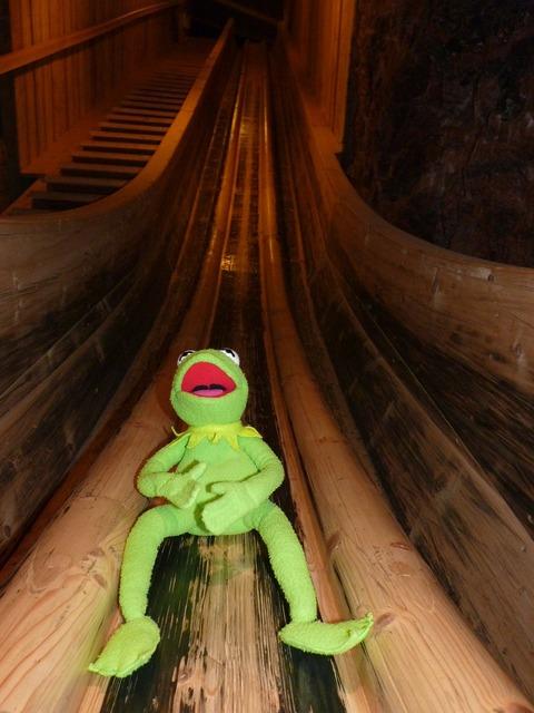 Frog kermit slip.