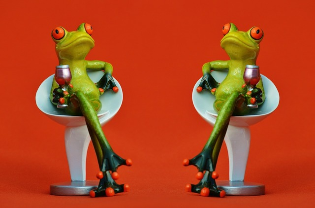 Frogs chair together, food drink.