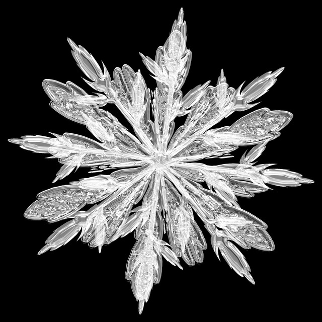 Frost ice crystal ice.