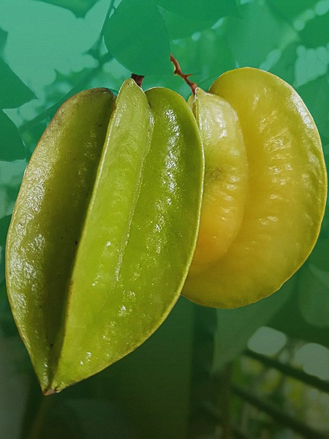 Fruit philippine fruit star fruit, food drink.