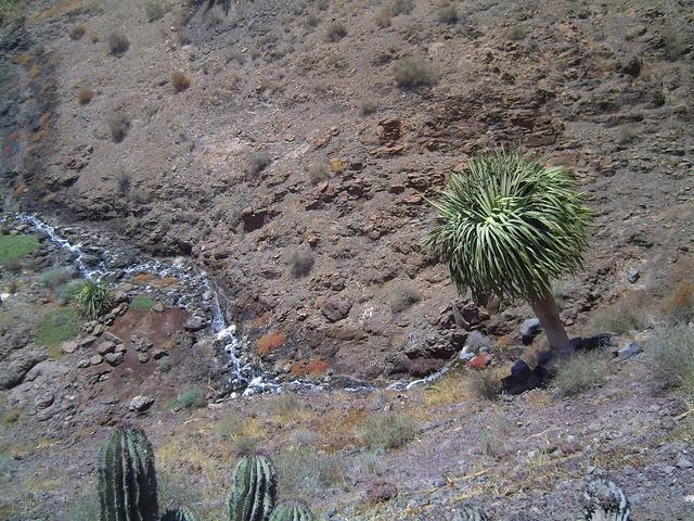 Fuerteventura valley stone, nature landscapes.
