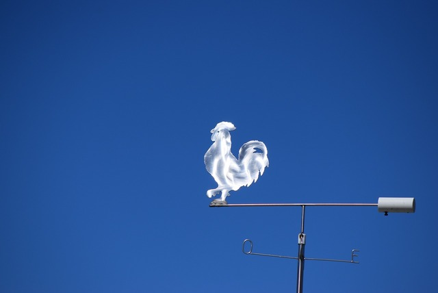 Galletto weathercock italy.