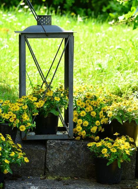 Garden decoration garden hussar button, nature landscapes.