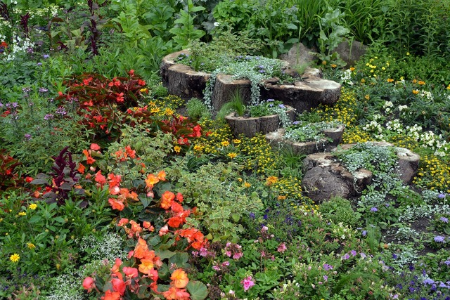 Garden fashion garden design, beauty fashion.