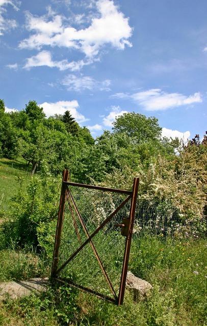 Garden gate garden door allotment, nature landscapes.