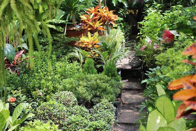 Garden green philippines.