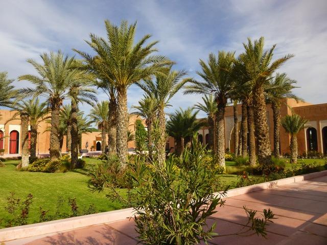 Garden marrackech morocco.