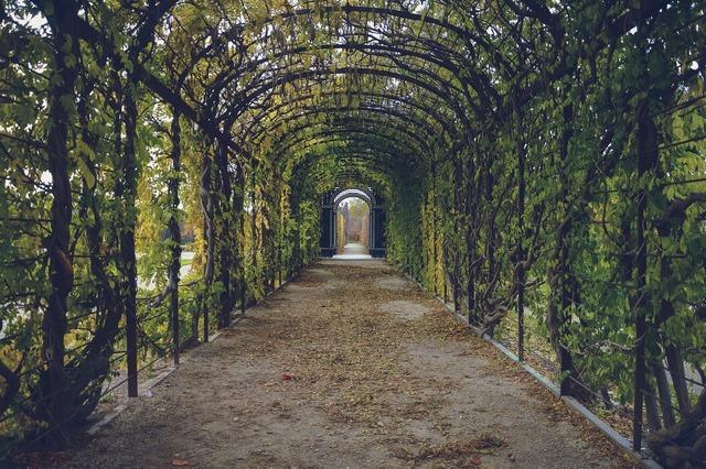 Garden path way.