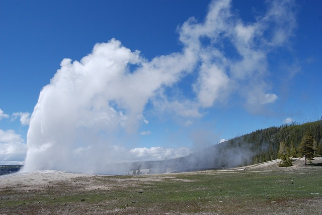 Geyser yellowstone national.