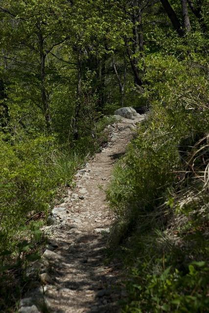 Gil mountain trail tracking.