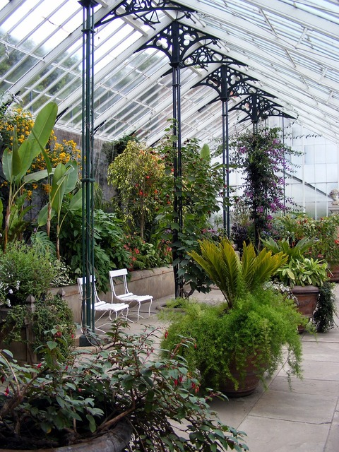 Glasshouse greenhouse plant, nature landscapes.
