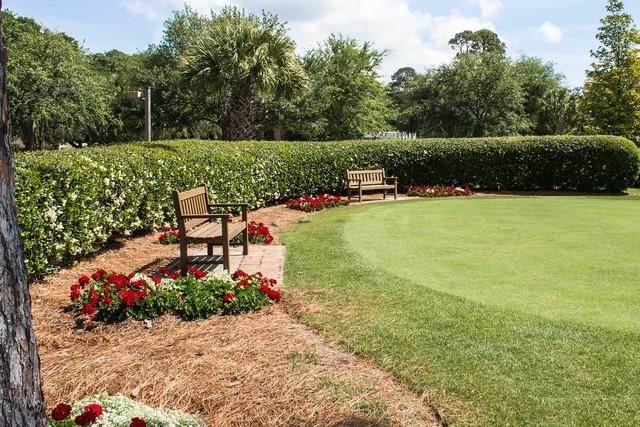Golf putting green green, sports.