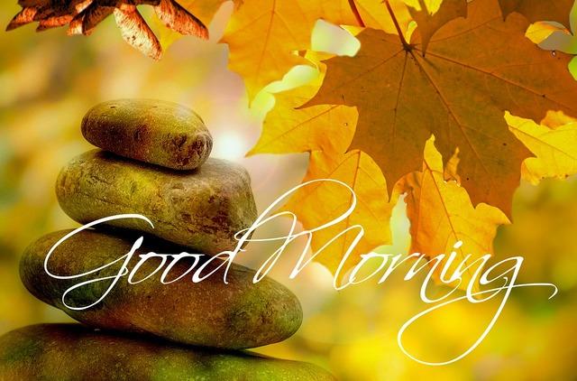 Good morning autumn tree.