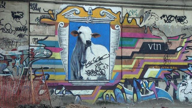 Graffiti cow rio, architecture buildings.