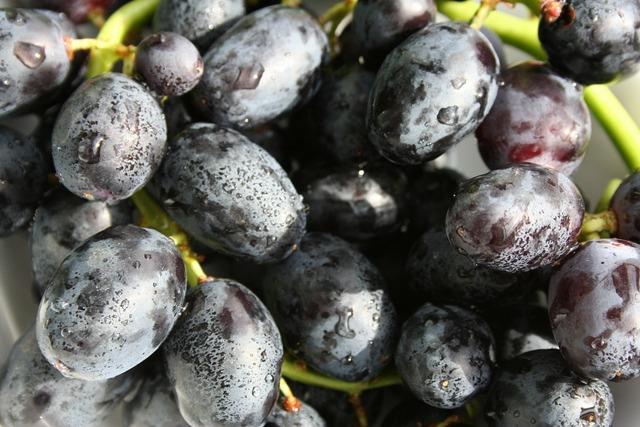 Grapes fruit black, food drink.