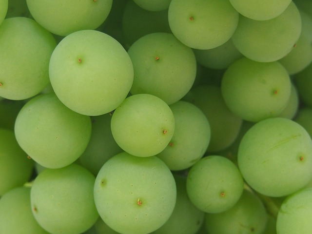 Grapes green wine, food drink.