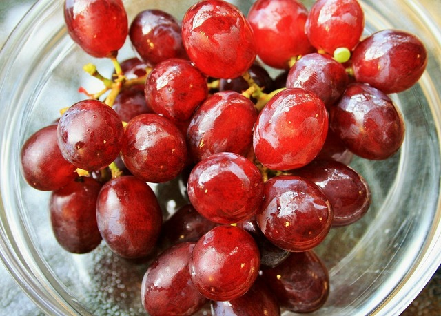 Grapes red wet, food drink.