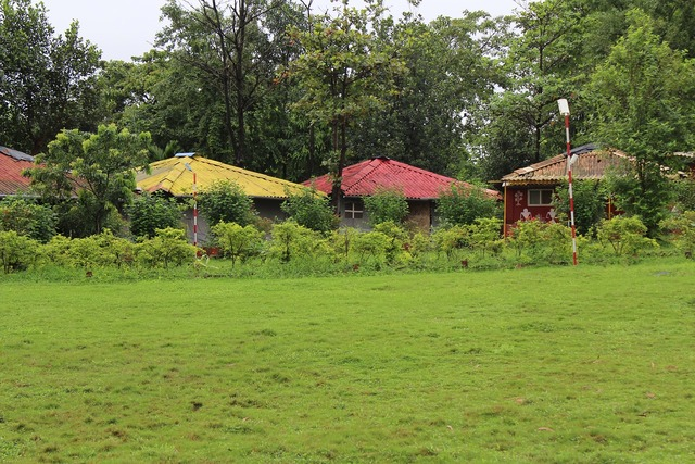 Green garden park.