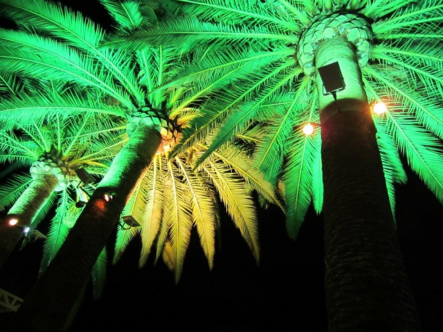 Green light electric lighting illumination.