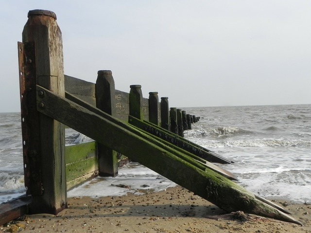 Groyne fence sea, travel vacation.