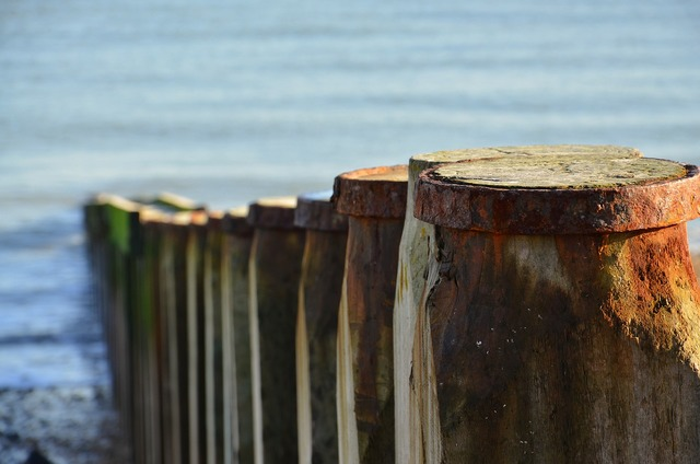 Groynes sea nature, nature landscapes.