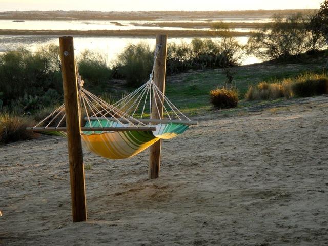 Hammock beach biotope, travel vacation.