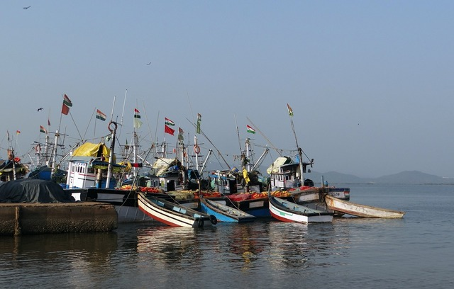 Harbour fishing boats.
