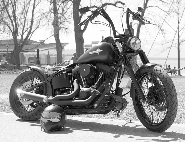 Harley harley davidson motorcycle, transportation traffic.